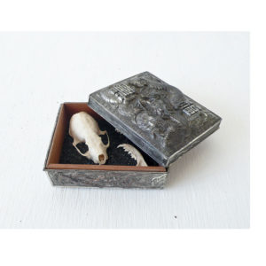 Real Mink Bones Skull in Vintage Chinese Dragon Silver Wood Box
