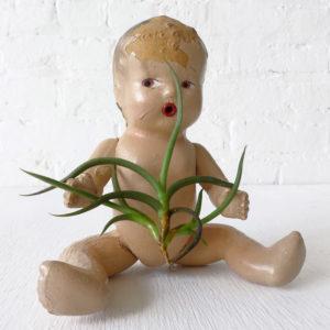 Creepy Cute Vintage Baby Doll with Myosura Air Plant Garden