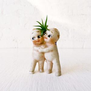 Kewpie Doll Air Plant Lovers Bisque Dolls