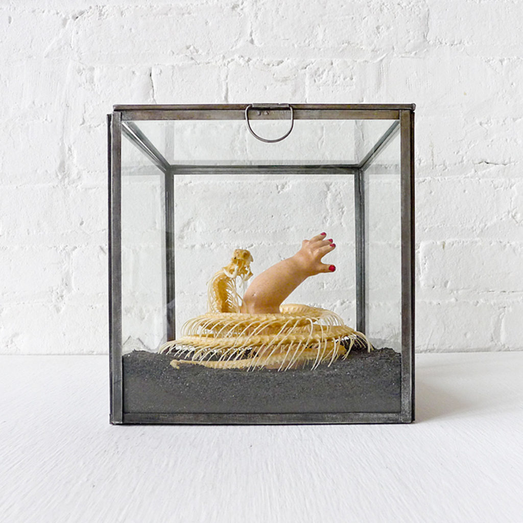 Cobra Lullaby Baby on Black Sand Glass Box – EarthSeaWarrior