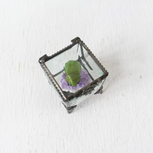 Green Mexican Beetle on Amethyst Geode Crystal Nugget in Beveled Glass Jewelry Box