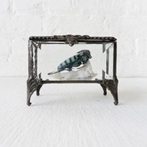 Sleeping Bluey on Crystal Quartz in Beveled Glass Jewelry Box