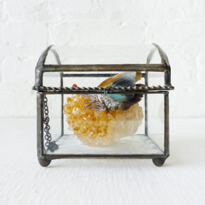 Sleeping Butterfly Pyro on Citrine Crystal in Beveled Glass Jewelry Box