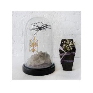 Real Bat Skeleton Quartz Cluster in Glass Dome