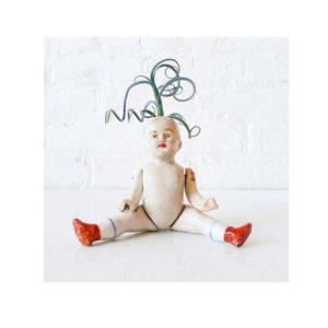 Colors that Creep – Air Plant Clown Garden Boy
