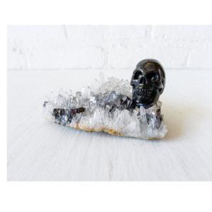 Dead Pirate Obsidian Skull Matrix Quartz Island