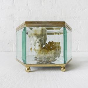 Island of Gold – Ocean Jasper Carved Skull in Vintage Beveled Glass Hexagon Trinket Box