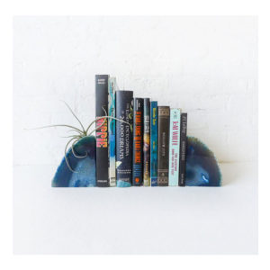 Air Plant Planetary Storm Book Ends