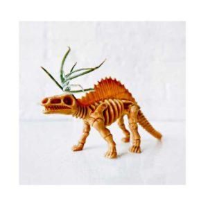 Dee the Dimetrodon - Air Plant Dinosaur Garden