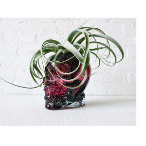 Large Purple Glass Crystal Skull - HUGE Air Plant Garden Planter