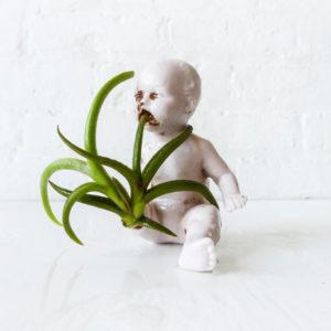 Garden Baby Antique German Bisque Doll w/ Air Plant - Mini Planter Terrarium - Spring Gardener Naturalist Gifts - Botanical - Spooky Gift