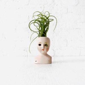 Stoned Medusa Air Plant – Antique German Bisque Doll Head Garden