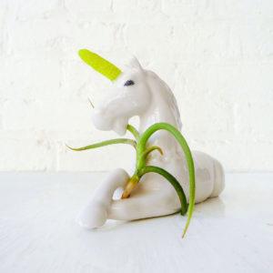 Magic Unicorn Air Plant Garden Planter