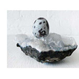 Quail Egg on Real Mink Skull on Apophyllite: Stilbite Cluster